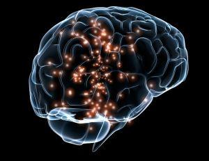 Neuronal_activity